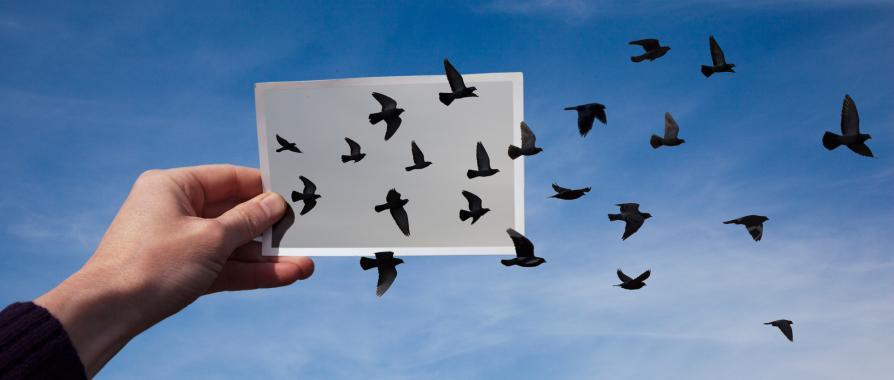 10 Tips for Tapping Your Inner Storyteller
